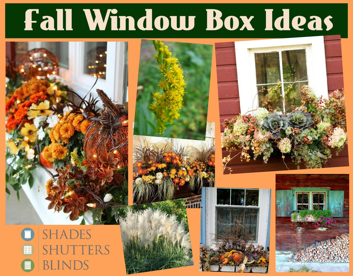 Window box ideas without flowers  fall window box ideas ueue bitssbfall from the at home