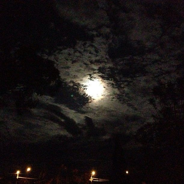 Moon - Trangie, NSW
