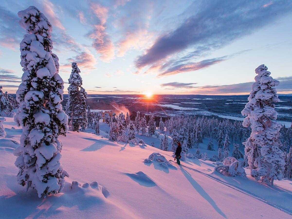 Arctic Treehouse Hotel On Twitter Lapland Winter Landscape Winter Scenes