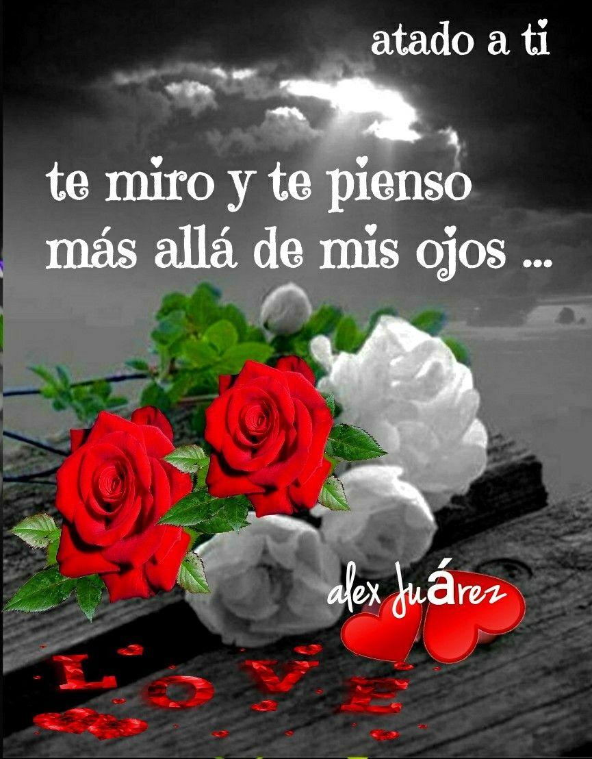 Pin By Shagus1 Shagus2 On Corazones Y Rosas Love Heart Gif Heart Gif Love Heart