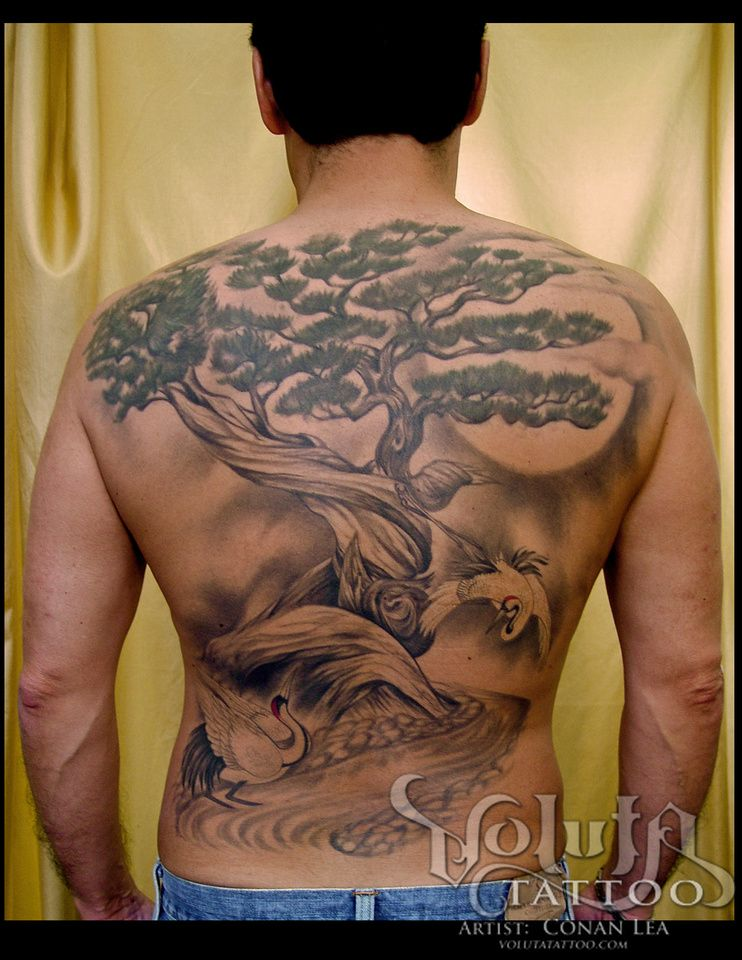 japanese bonsai with cranes and moon tattoo with baseball sized cover up tattoos by conan. Black Bedroom Furniture Sets. Home Design Ideas