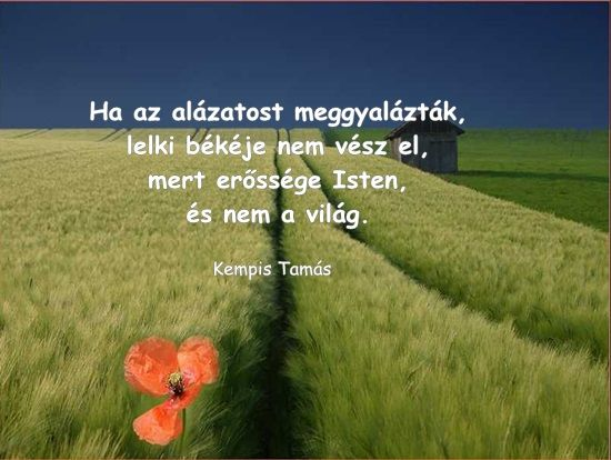 kempis tamás idézetek Kempis Tamás idézet | About me blog, Bible, Country roads