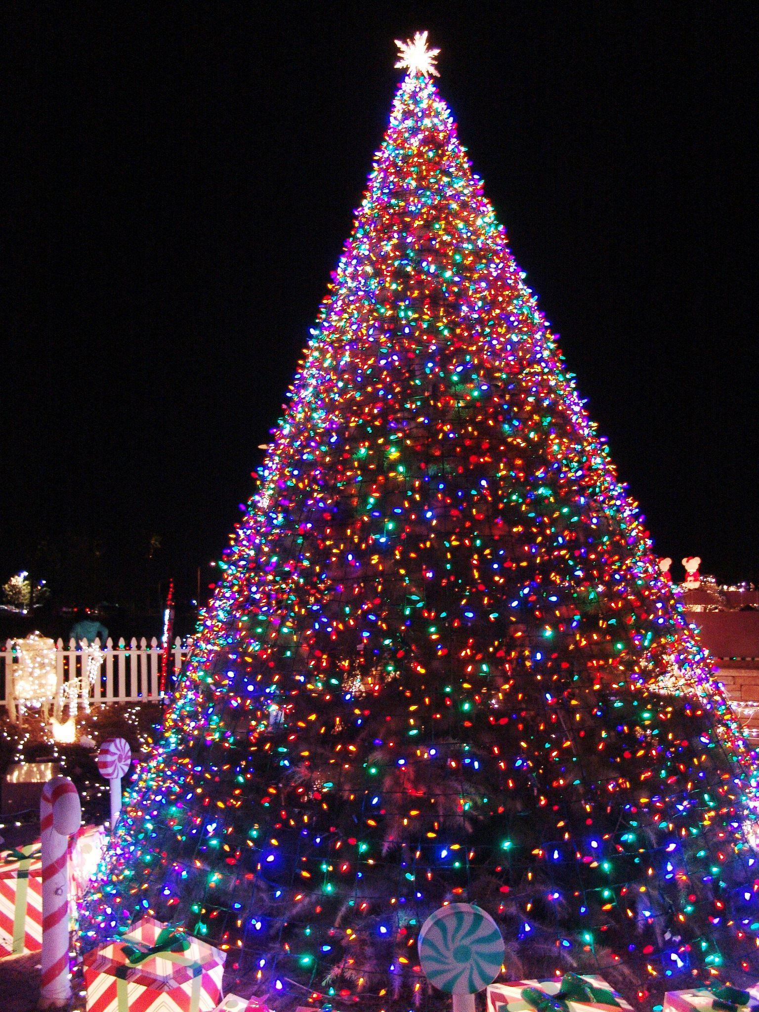 Lights For Christmas Tree