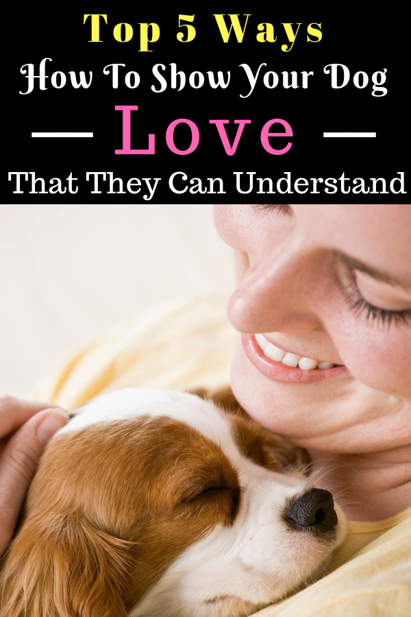 6 Ways To Show Your Dog Love That They Can Understand With Images