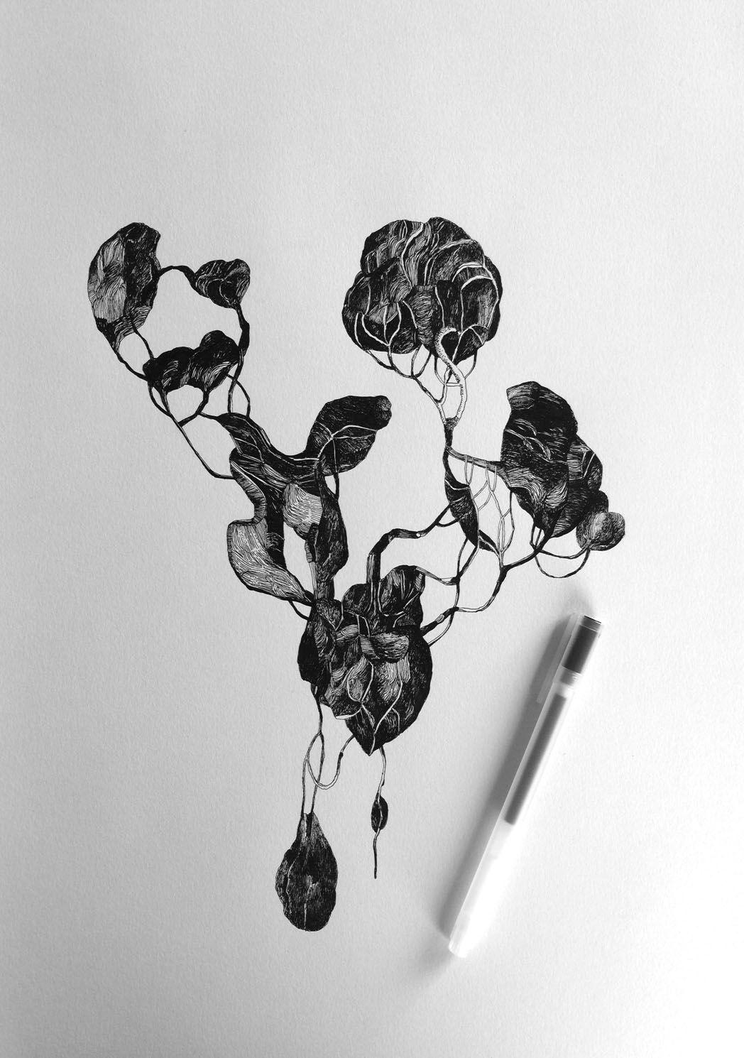 """""""Nature morte"""", octobre 2017. Stylo à encre sur papier"""