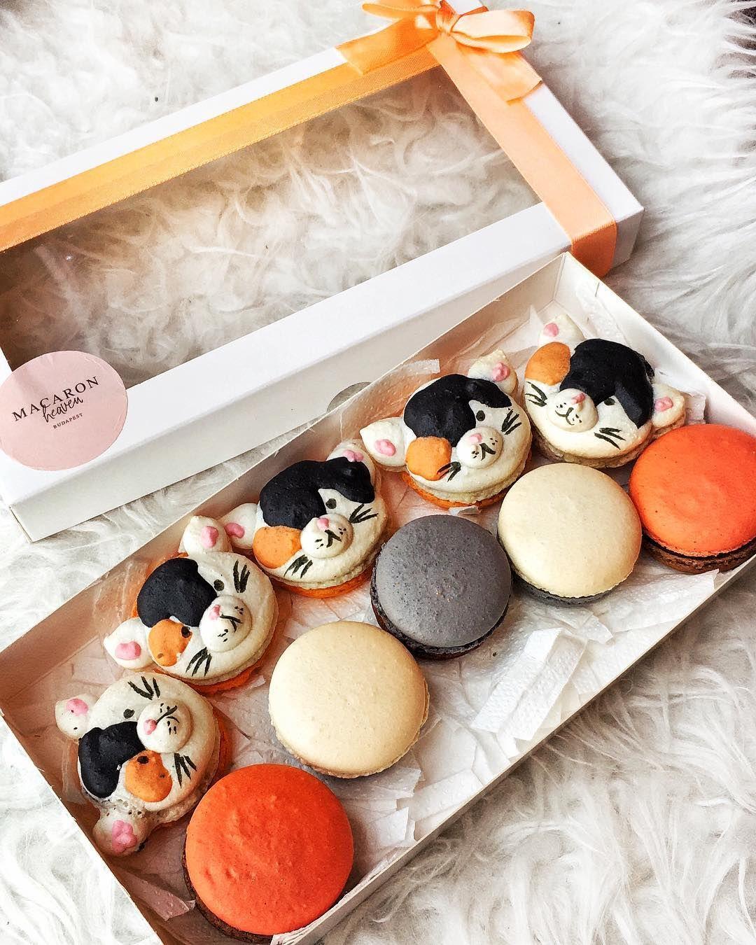 Macarons, Instagram, Decorative Tray