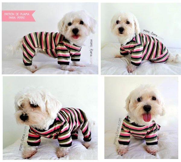 DIY como hacer un pijama para mascota   Costura   Pinterest ...