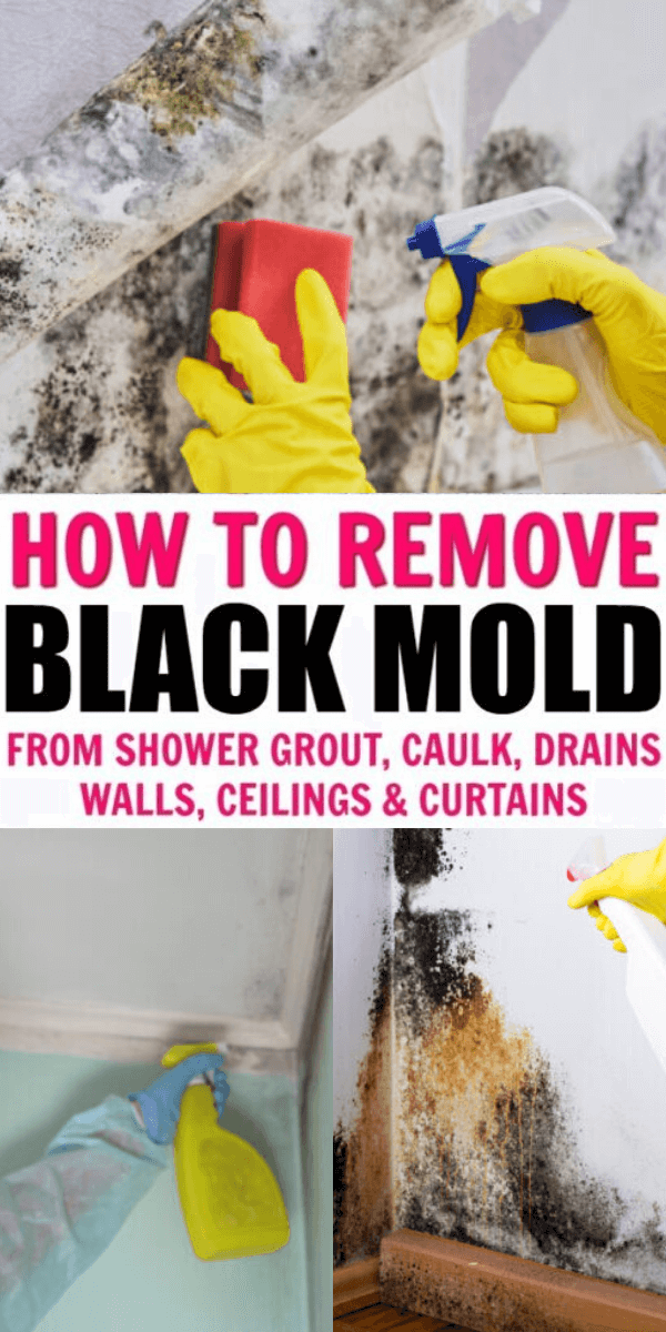 Black Mold Removal: 7 Effective Hacks to Clean bla