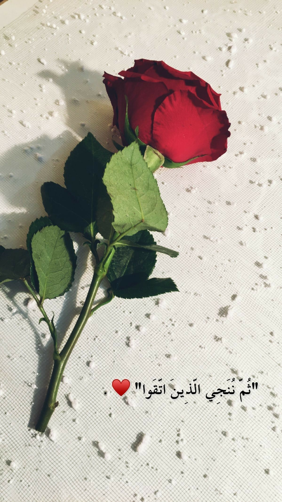 Pin By Queen Jana On Arabic Quotes Beautiful Arabic Words Cover Photo Quotes Arabic Love Quotes