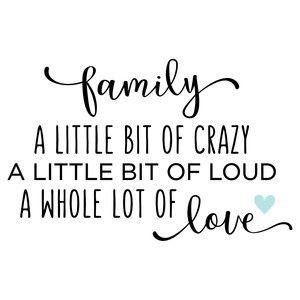Silhouette Design Store: Family - A Little Crazy Quote