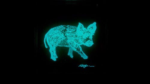 Artists created living paintings from glow-in-the-dark bacteriaV... - http://edgysocial.com/artists-created-living-paintings-from-glow-in-the-dark-bacteriav/