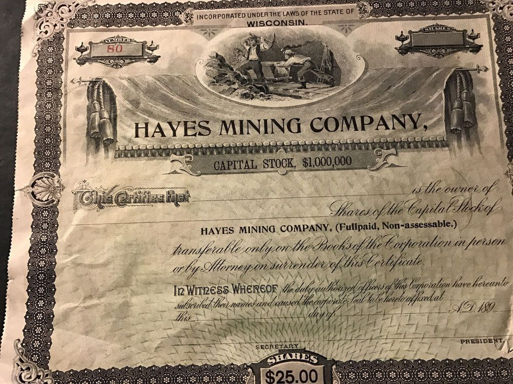 Blank Hayes Mining Company Stock Certificate Wisconsin 1890s