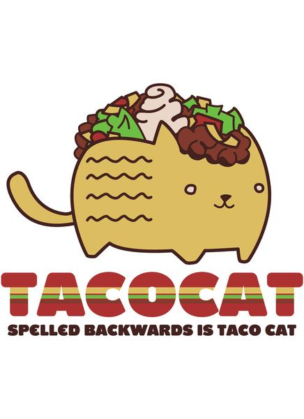 Taco Cat Wallpaper 7promote