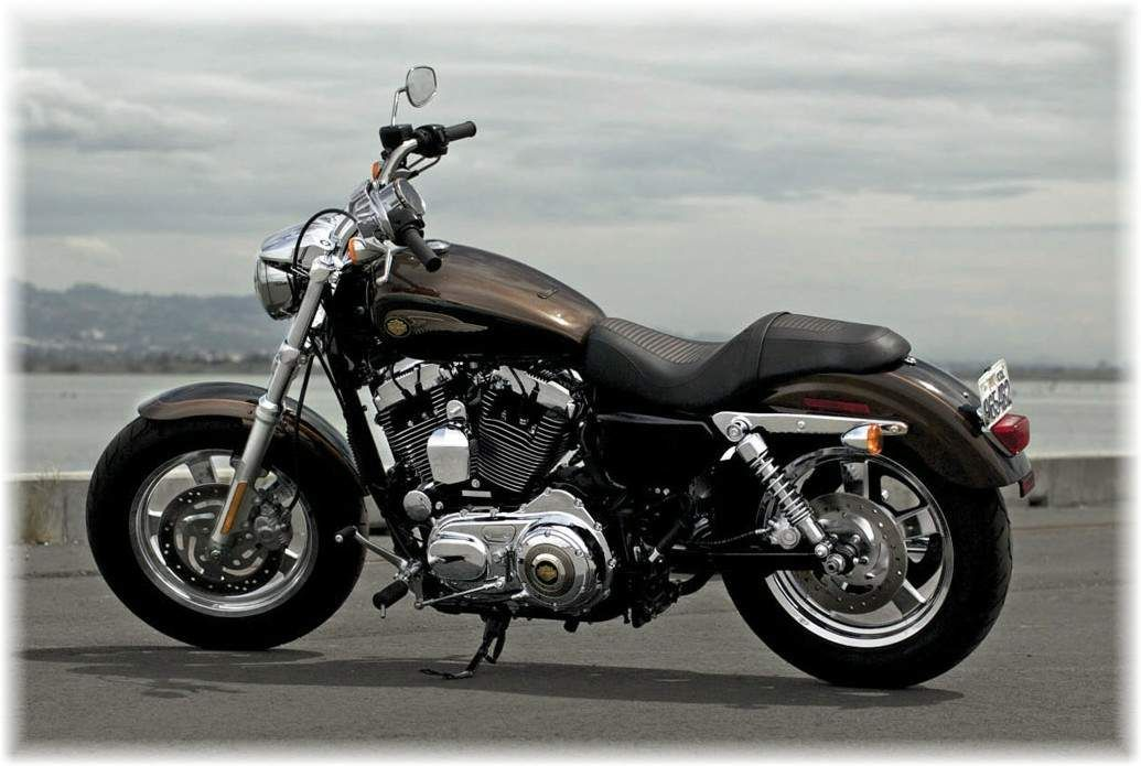 Harley Davidson 1200 Custom (With images) Harley 1200