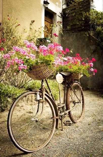 Old fashioned bicycle and flowers...beautiful!