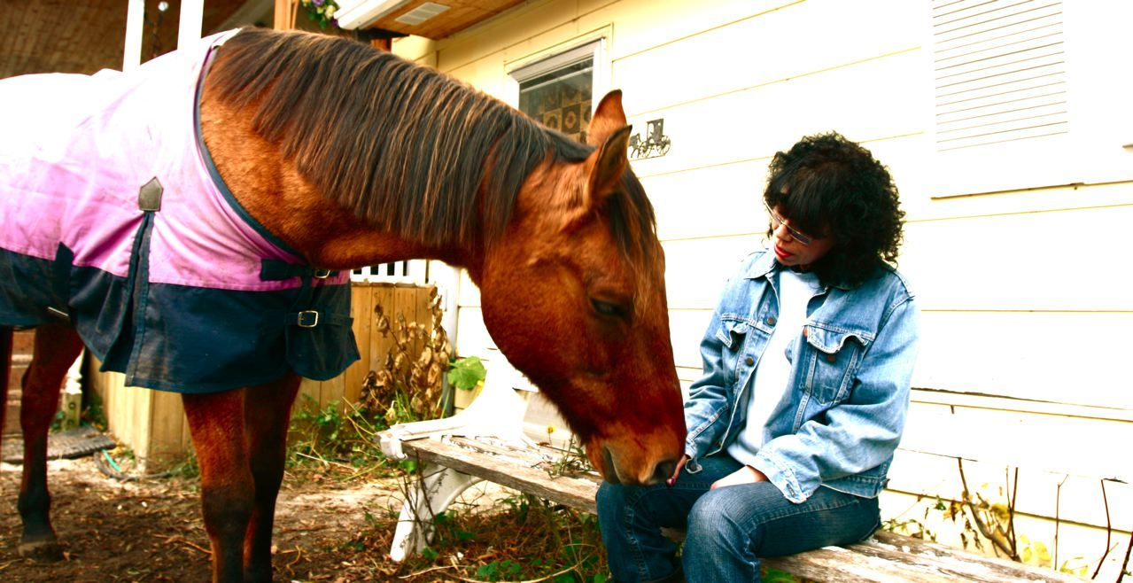 My big, 1,200 lb, 27 year old rescue horse. More on Mr Bear to come!