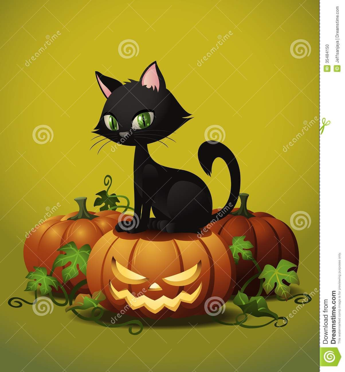 Halloween Cats And Kittens | Halloween Cat On Pumpkin