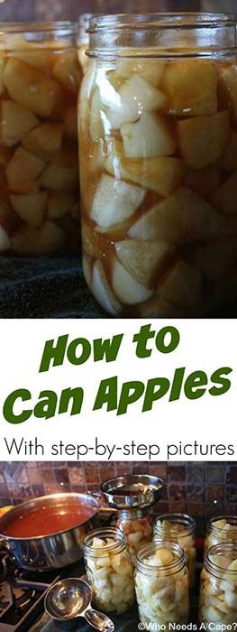 Canning recipes 60 most popular guides to preserve your fruits canning recipes 60 most popular guides to preserve your fruits vegetables and meats forumfinder Gallery