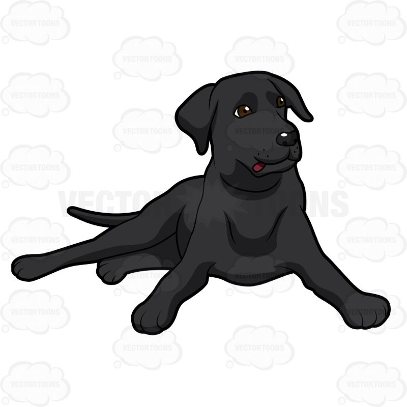 Black Labrador Lying Down With Its Head Up In 2020 Brown Labrador Black Labrador Dog Puppy Cartoon