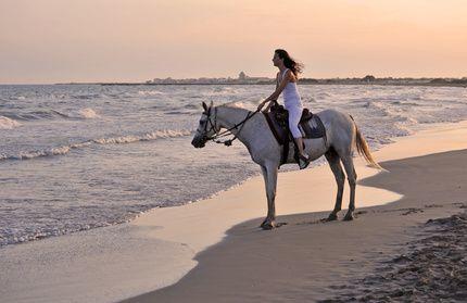 Balade à cheval en Camargue  camargue  plage  cheval  nature  balade  sea   beach  sable  provence 06d6f9ea4b8