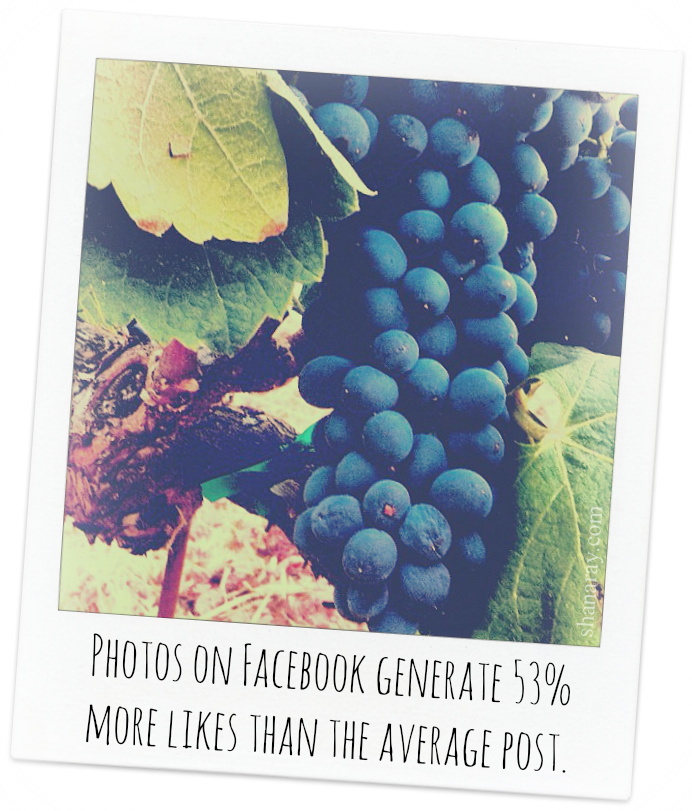 Using images as part of your social media marketing is more important than ever.
