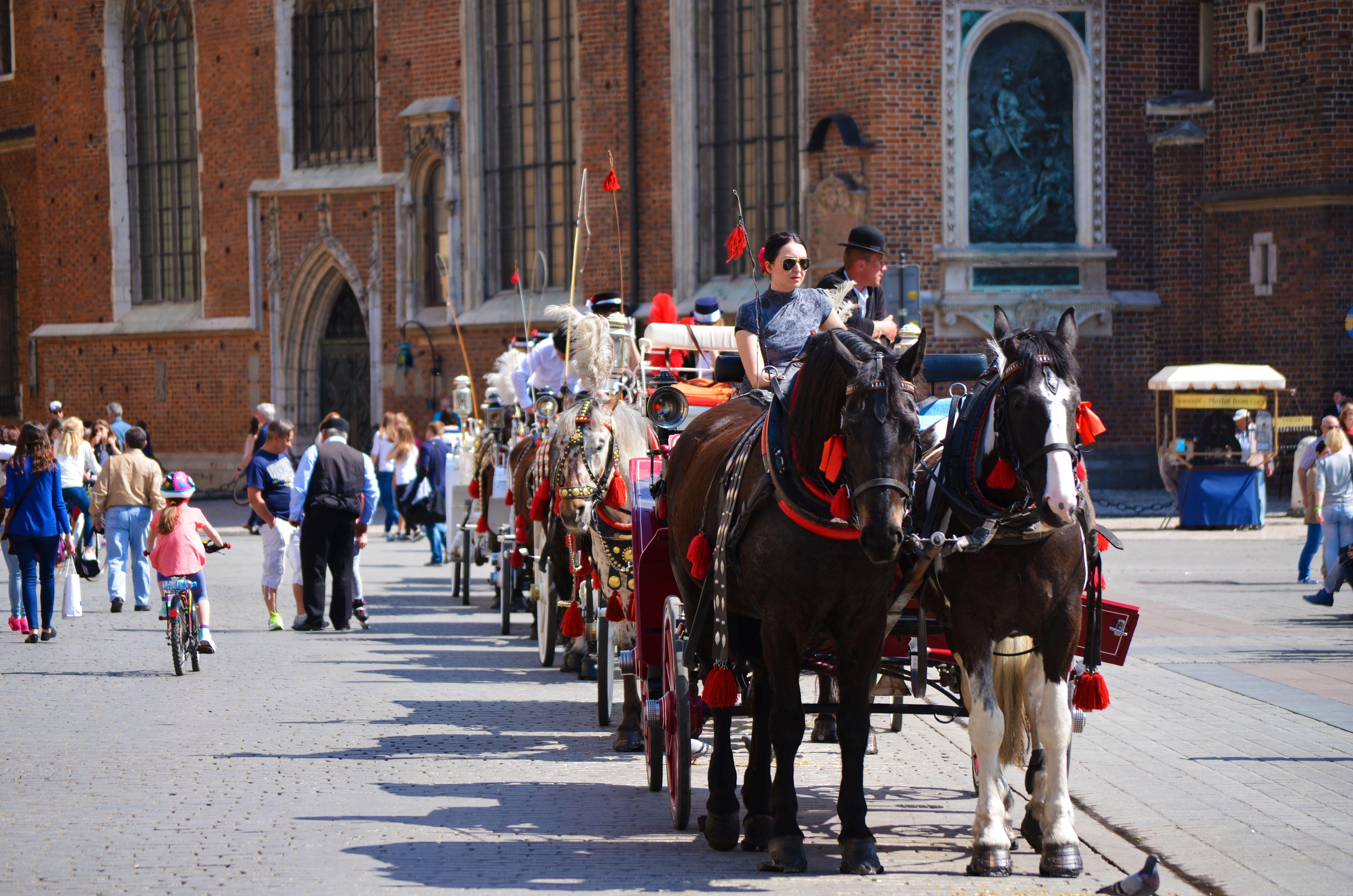 Carruaje de caballos, Cracovia