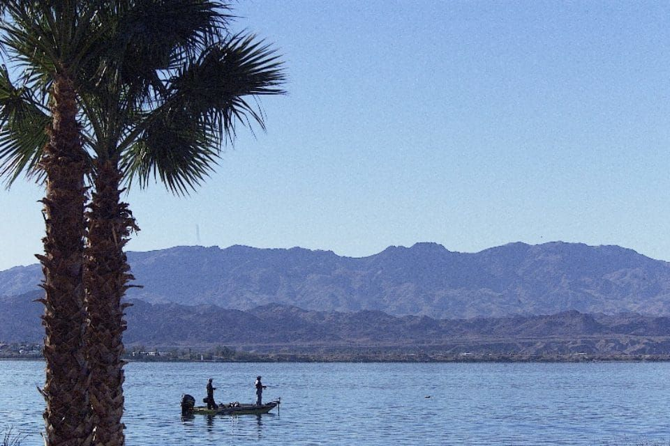 ProTeams Bass Tournament Comes to Lake Havasu Bass