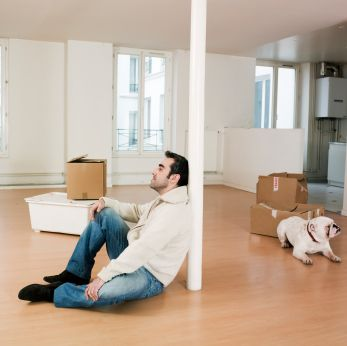 Renting When You Have Pets Can Be An Uphill Battle Best