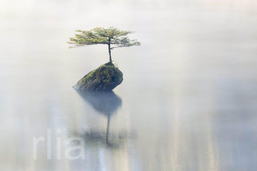 Une île au large de l'espoir Où les hommes n'auraient pas peur ©National News and Pictures/MAXPPP