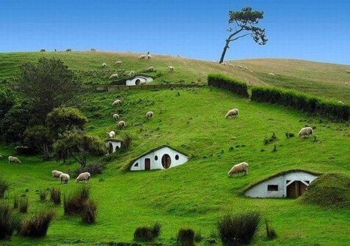 Talk about interesting places...   Real Hobbit Houses, New Zealand.