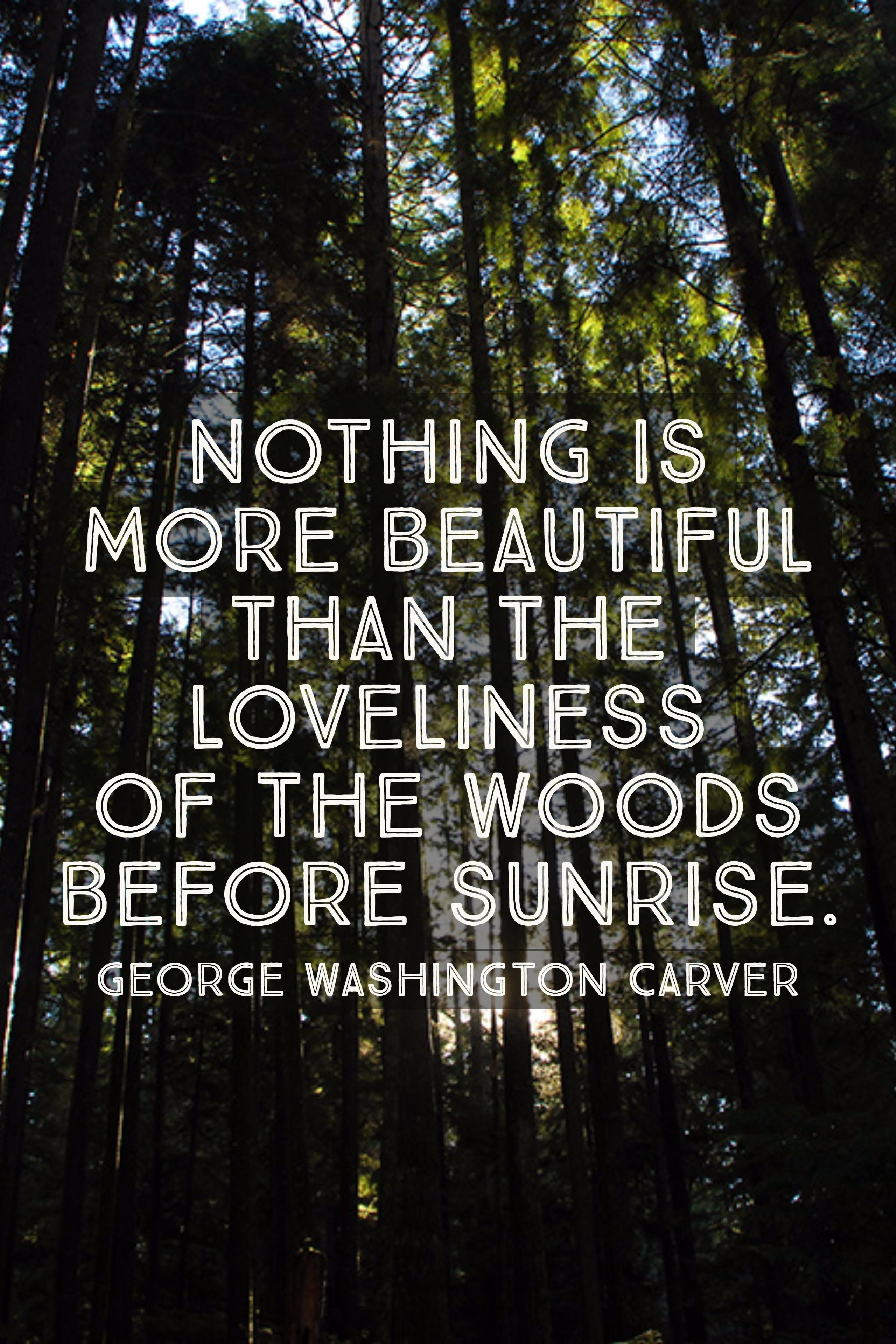 George Washington Carver Quotes Nothing Is More Beautiful Than The Loveliness Of The Woods Before .