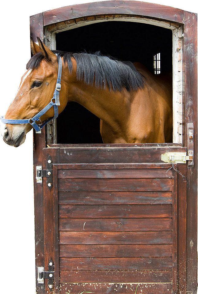 Wandsticker Tiere Pferd Stall Box Tür Kinderzimmer in 2019 ...