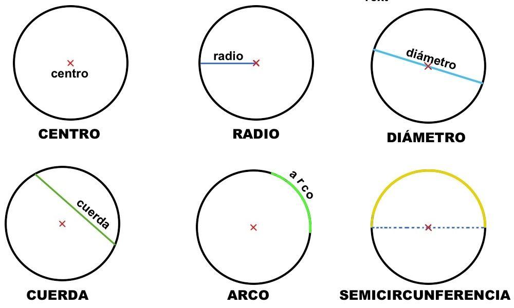 Resultado De Imagen Para Elementos De Una Circunferencia Y De Un Circulo Circunferencia Elementos Circulo