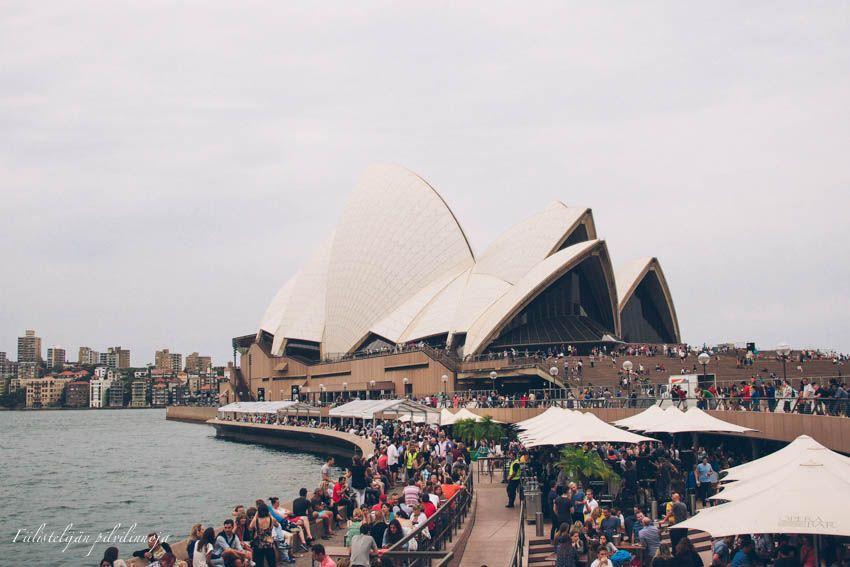 Fiilistelijän pilvilinnoja: Yhdet häät ja uusi vuosi Sydneyssä