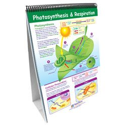 Curriculum Mastery Life Science Flip Chart Set, Grades 6-8