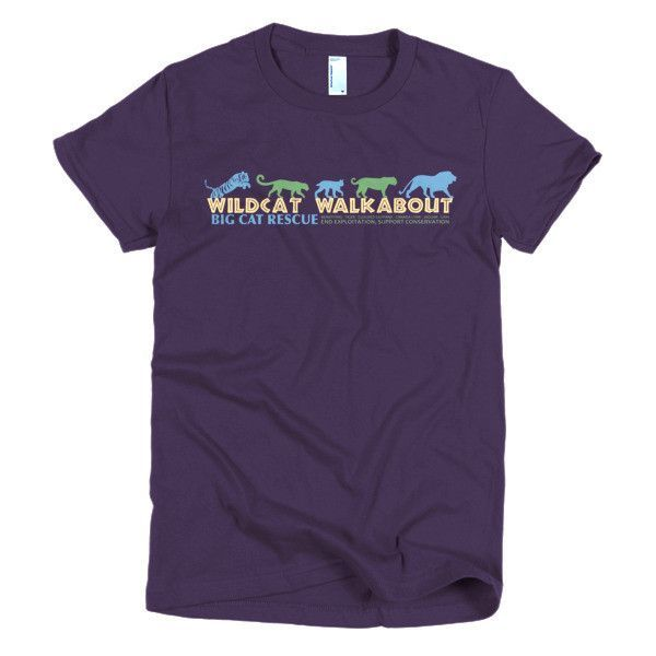 Shirt - 2016 Wildcat Walkabout Junior's Fitted
