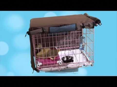 Potty Train A Yorkie Puppy Pee Pad Training A Maltese Pup Crate