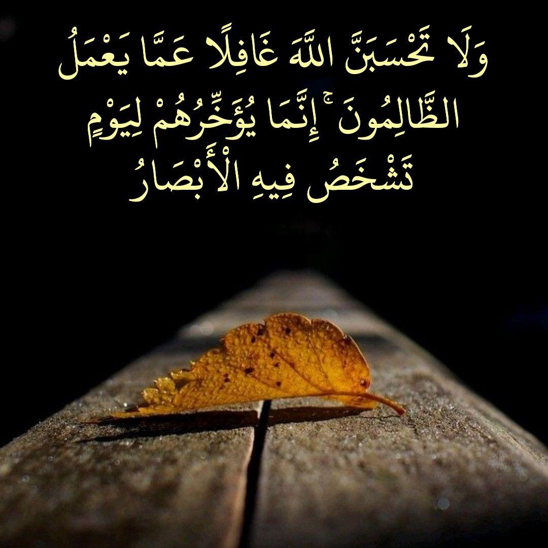 قرآن كريم آية ولا تحسبن الله غافلا عما يعمل الظالمون Islamic Quotes Prayer For The Day Quran Arabic