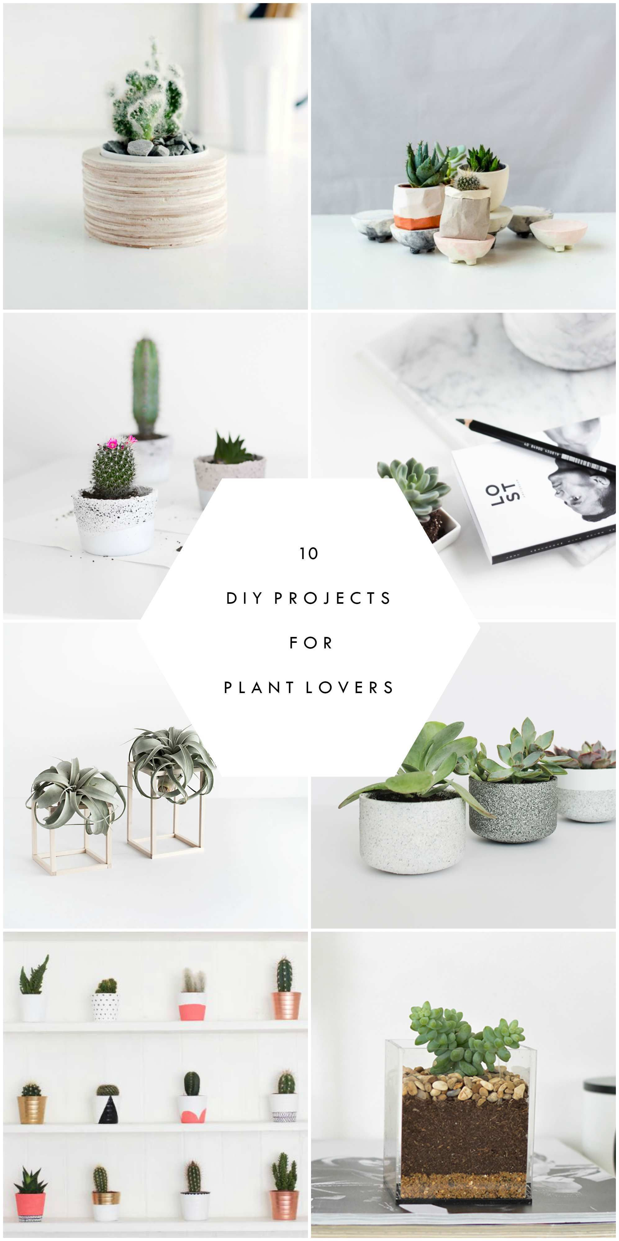 10 Diy Projects For Plant Lovers Cool Diy Projects Plant Crafts Diy Projects