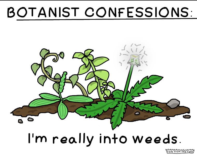botany Tails From The Field Botany, Botanist, Flower boys