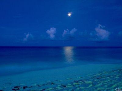 Beach-wallpapers-Beach Night Sky-wallpaper