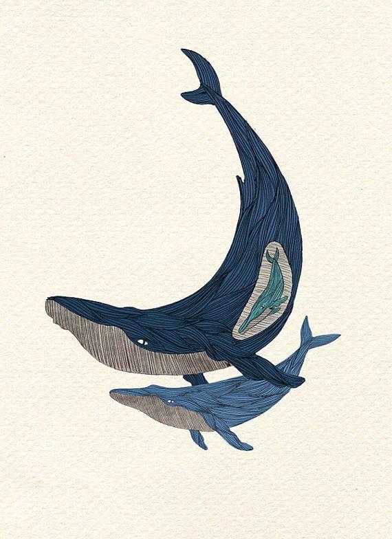 Moby Dick S Mistress Ballena Ilustracion Art Dessin Baleine A