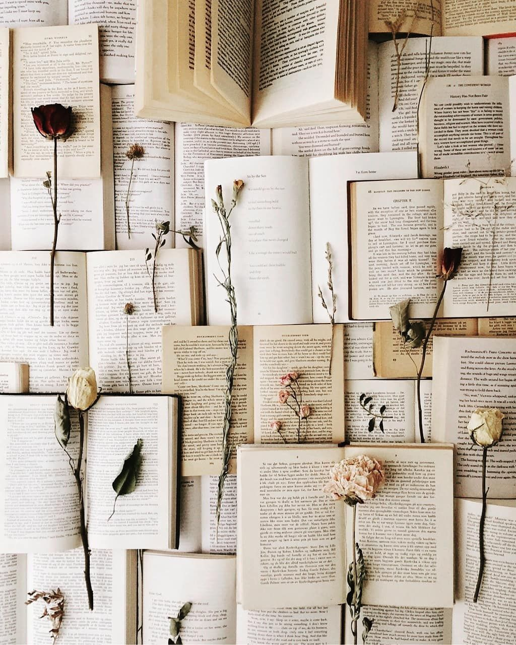 Photo of books & dried flowers