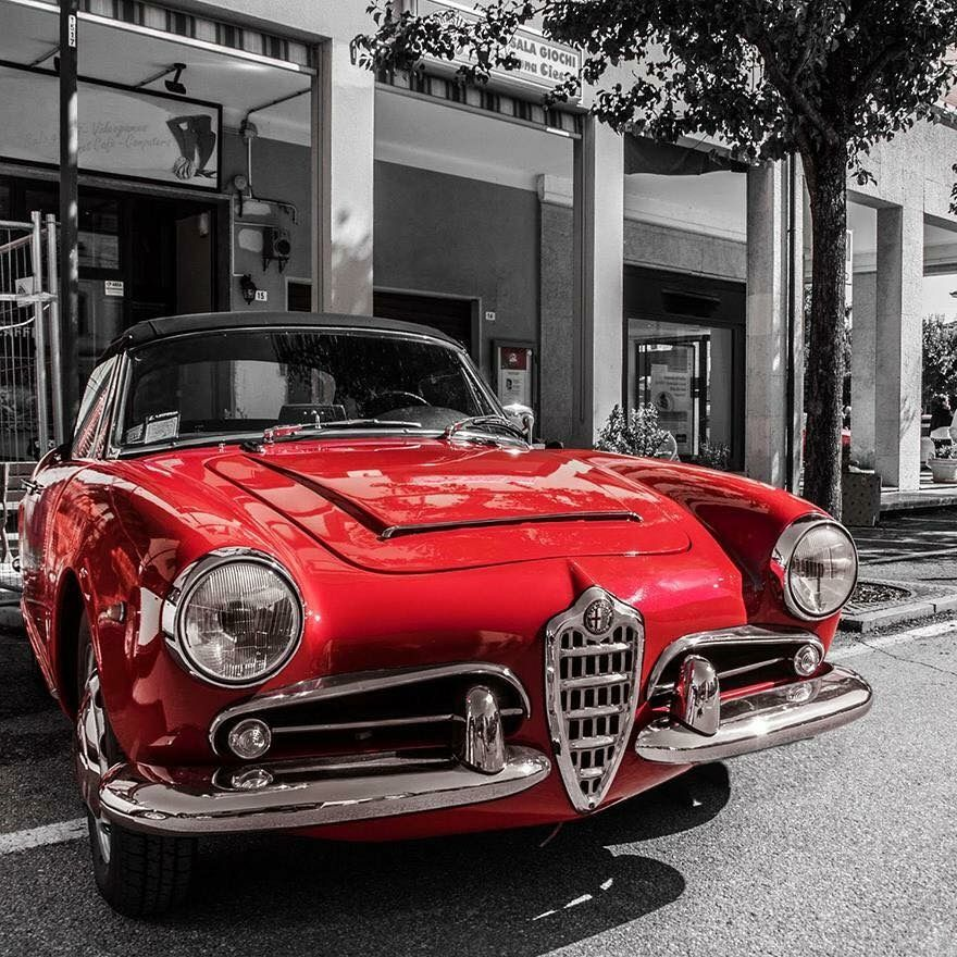Pin by Murat Kaya on Alfa Romeo | Pinterest | Alfa romeo, Alfa ...