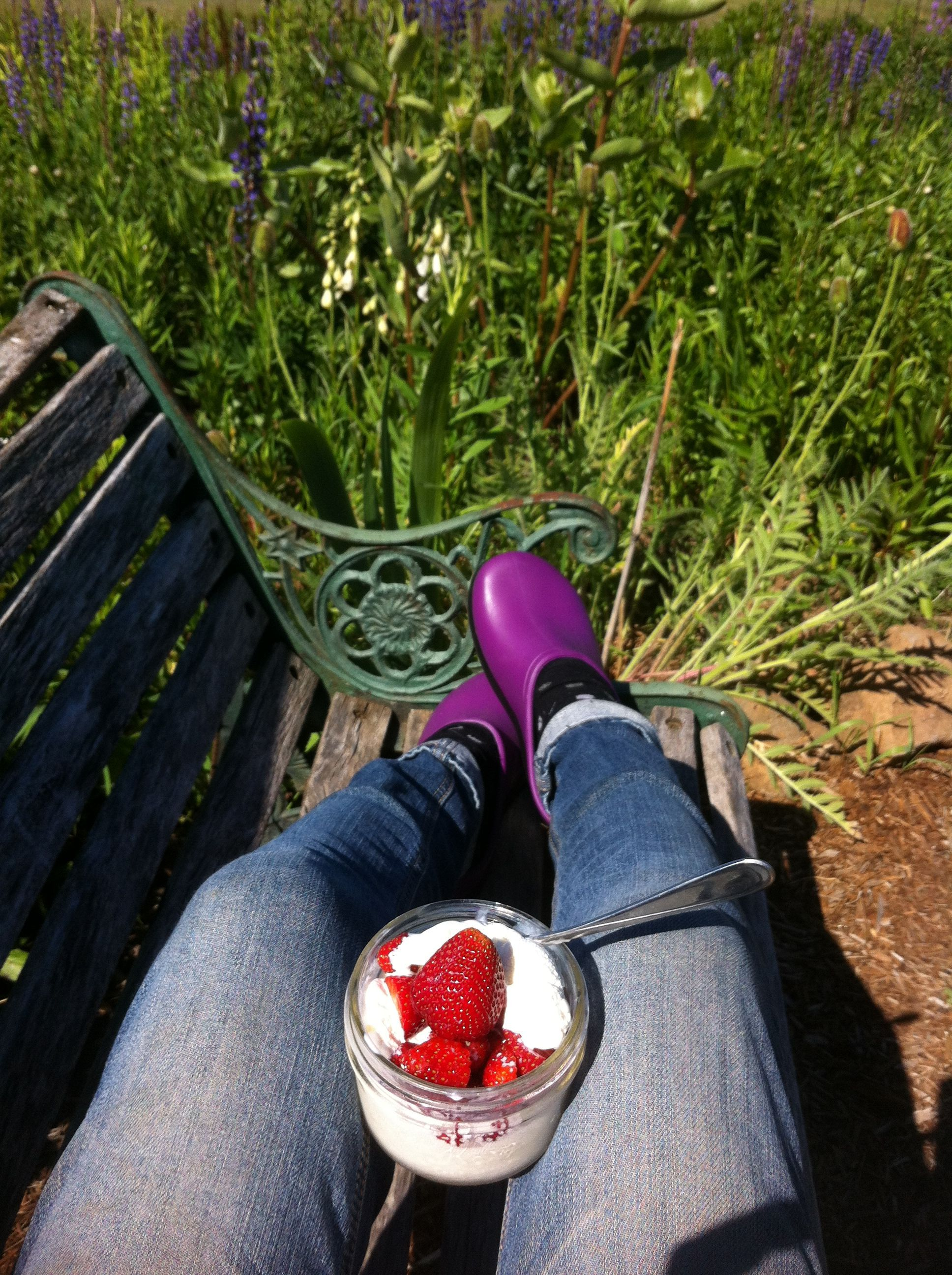 Break Time. Time to relax & put my feet up. Love Summer on the lavender farm, sunshine & Strawberries!!
