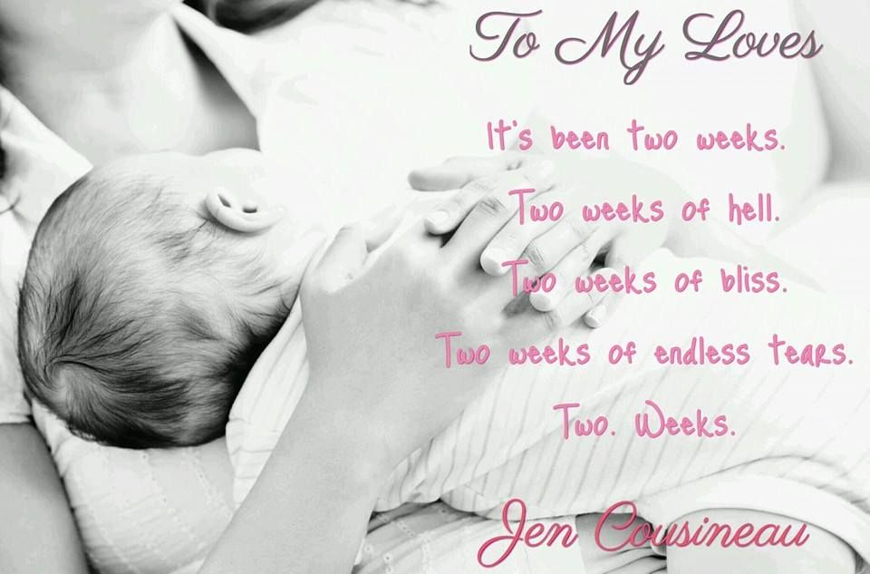 To My Loves - Coming 4/2016 - Pre-order now at http://www.amazon.com/My-Loves-Jen-Cousineau-ebook/dp/B01ARBGCIA/ref=sr_1_2?ie=UTF8&qid=1457313334&sr=8-2&keywords=jen+cousineau