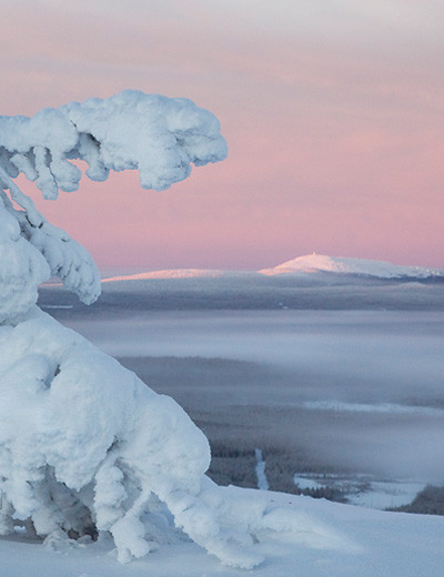 Pyhä-Luosto National Park - From the highest peak in the Pyhä mountains, the sky was a beautiful shade of pink one December afternoon. The last rays of light hit the peak of the Luosto #Mountain 25 kilometres away. | #travel #Finland #vacation