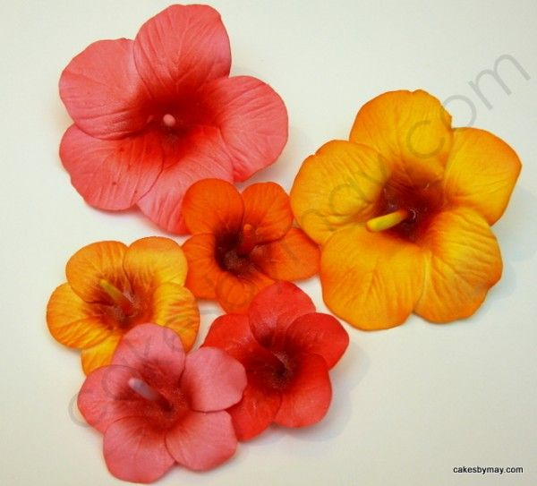 Tutorial On Making Hibiscus Flowers Out Of Gumpaste Cakes