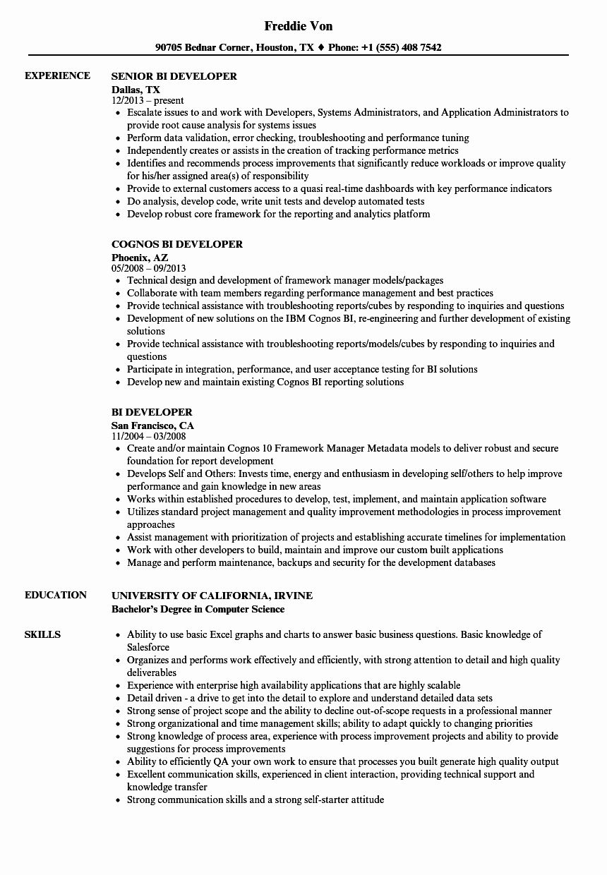Business Intelligence Developer Resume Best Of Power Bi