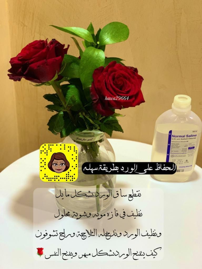 Pin By حواء الهوساوي On Baby Care Essentials Baby Care Essentials Glass Vase Glass